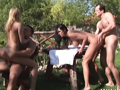 Anal orgy outdoors in the grass
