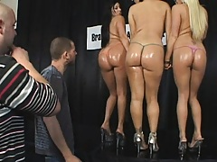 Busty chicks in a oiled up ass pageant