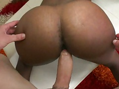 Doggy style fucking Cocoo with ass spreading