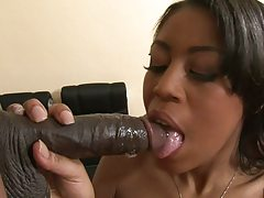 3some blowjob and cowgirl with Dolce and Venessa