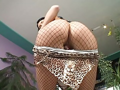 Camilla Ken flashing her ass in pantyhose fishnet and her hairless cunt